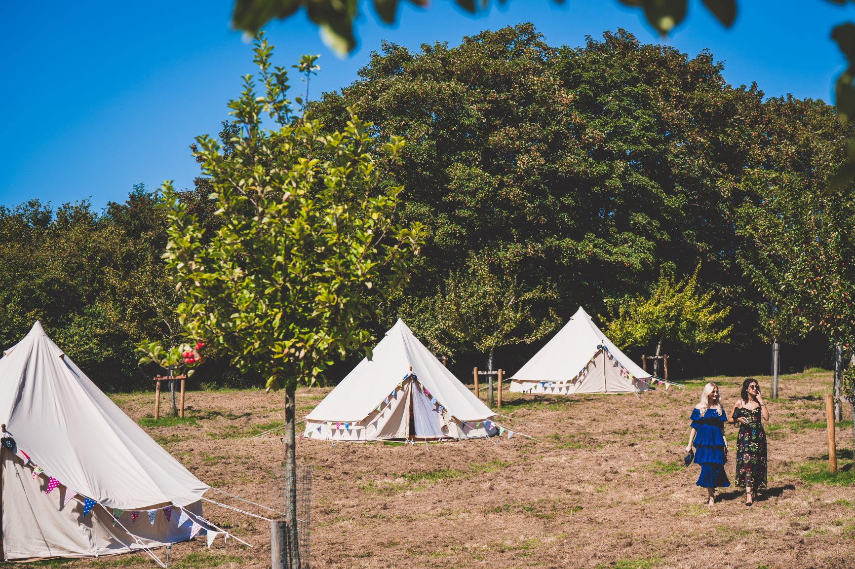 Glamping For Wedding Guests Private Estate Wedding Devon